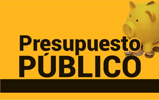 Presupuesto Público (XI Cohorte)