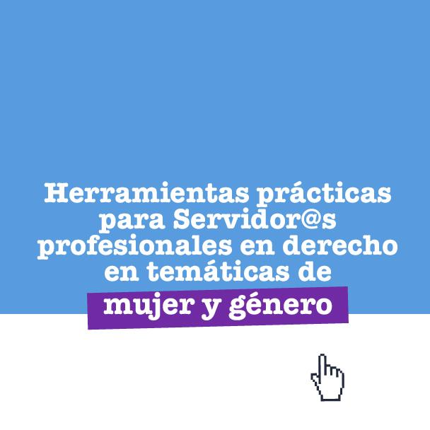 EL DERECHO DE LAS MUJERES A UNA VIDA LIBRE DE VIOLENCIAS: HERRAMIENTAS PRÁCTICAS PARA SU RECONOCIMIENTO Y GARANTÍA-2018-II